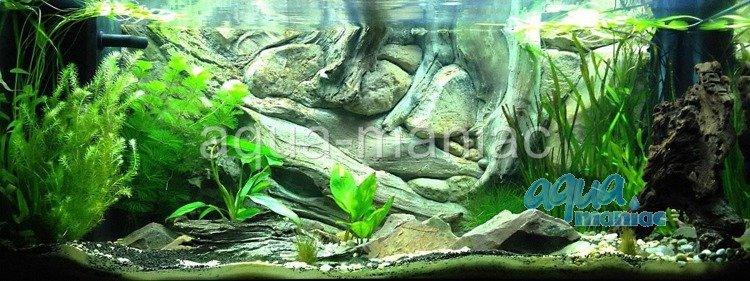 3d aquarium background amazon design for tropical fish tanks for 3d wallpaper for home amazon