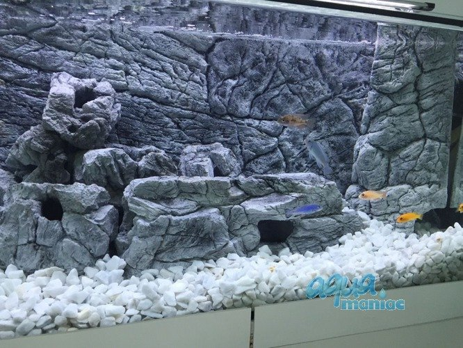 Thin aquarium background for tropical fish tanks in grey for Thin fish tank