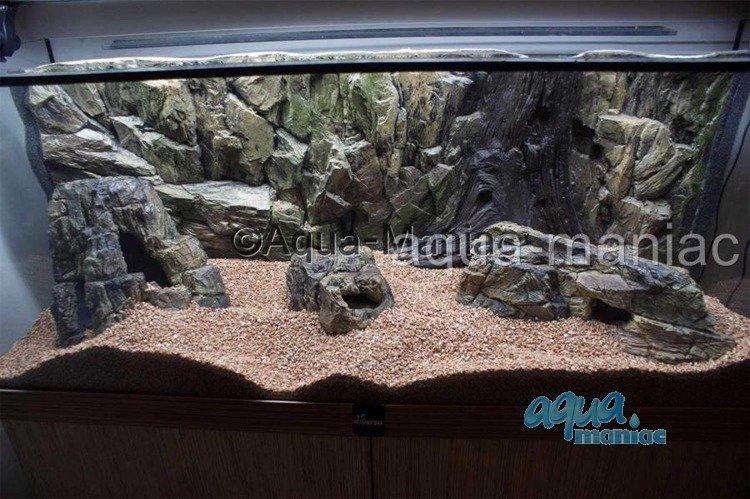 Aquarium small rock hide for tropical fish tanks for for Aquarium rock decoration