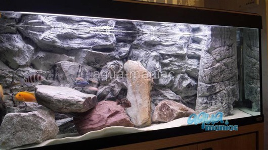 3D grey rock background 77x36cm