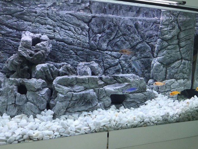 JUWEL Trigon 190 3D thin grey rock background in 2 sections