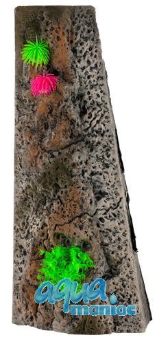Start Module Limestone Background 20x60cm with corals