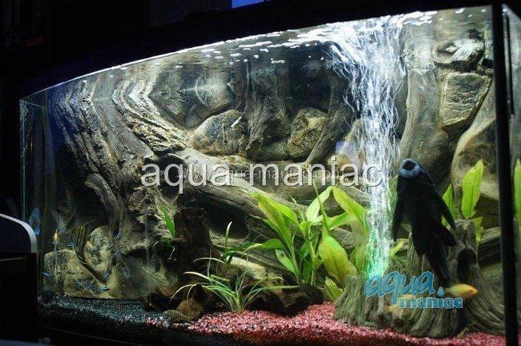 3d Aquarium Background Amazon Design For Tropical Fish Tanks
