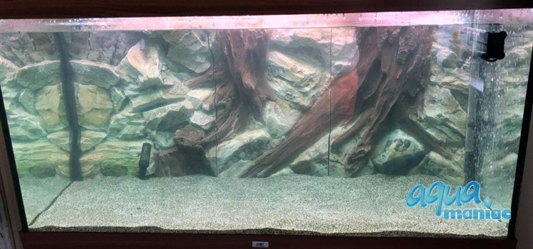 3D Root Background 178x58cm in 3 section to fit 6 foot by 2 foot tanks