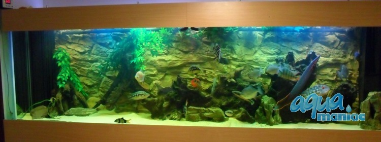 3D Rock Background 209x56cm in 4 section to fit 7 foot by 2 foot tanks