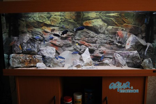 3D beige rock background 196x54cm