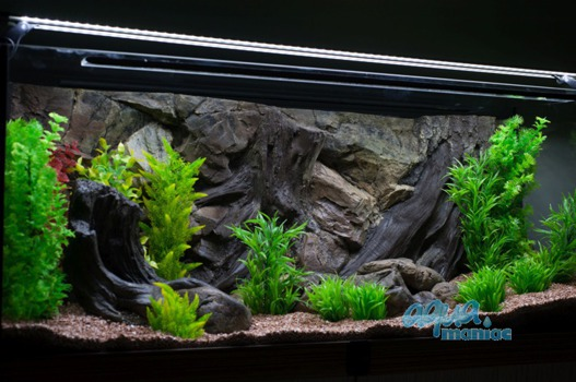 3D root background 97x45cm