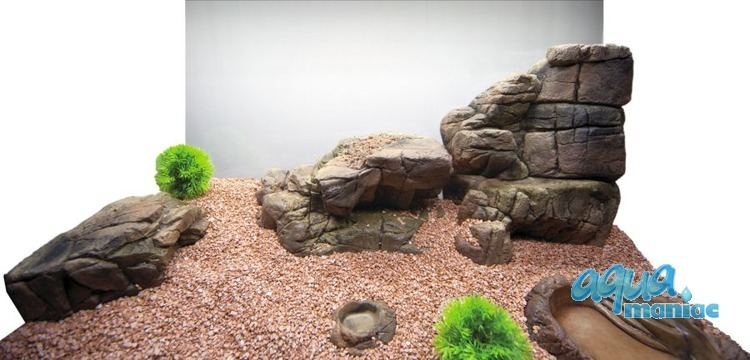 Aquarium Terrarium large ledge