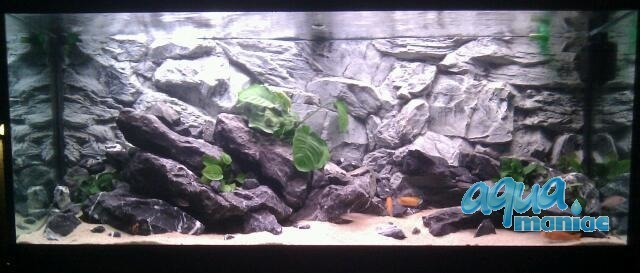 Fluval Roma 125 grey rock background 78x43cm 1 section
