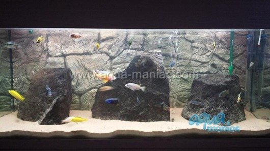JUWEL RIO 240 3D thin grey rock background 117x45cm in 2 sections