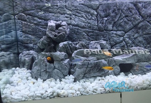JUWEL Vision 450 3D thin grey rock background 147x53cm in 3 sections