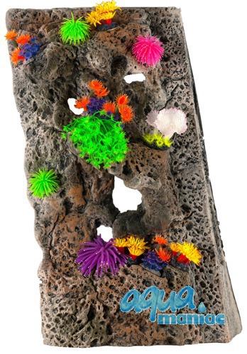 Module Limestone Background 40x50cm with corals