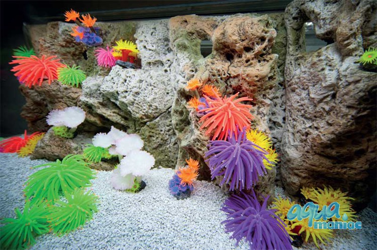 Modules of Limestone Background with corals to fit 240x50cm aquarium